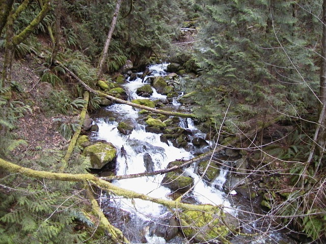 Mountain stream mapping and inventory.
