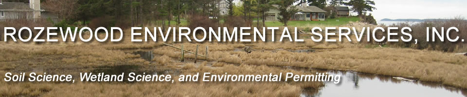 Rozewood Environmental Services, Inc.