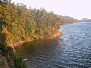 Steep Shorelines and Nearshore Intertidal, Orcas Island, WA