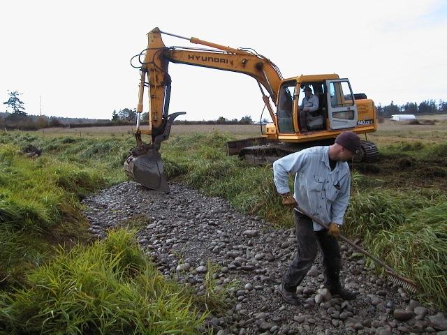 Spawning gravel-cobble installation in False Bay Creek, San Juan Island, WA.